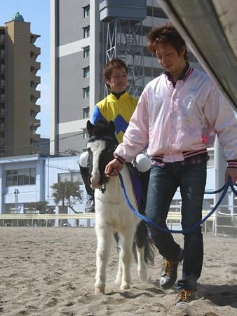 120219ポニーレースin川崎-本馬場入場-誘導馬ゴールドリブラ号と拜原靖之騎手-01