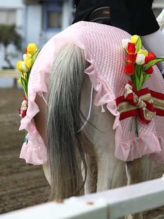 川崎競馬の誘導馬03月開催 チューリップVer-120301-30