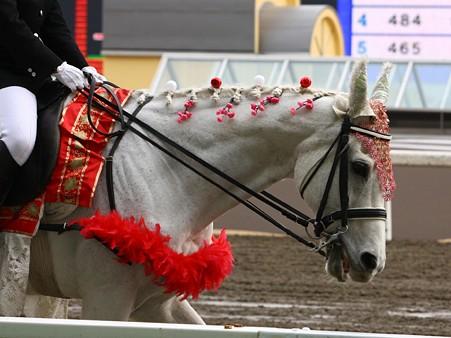 川崎競馬の誘導馬03月開催 ひな祭りVer-120301-13-large