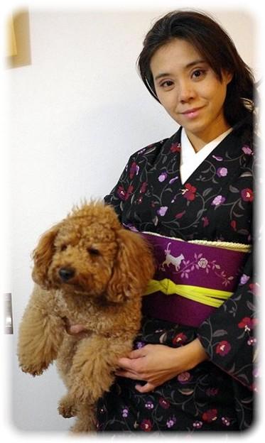 Photos: ちりりと帯