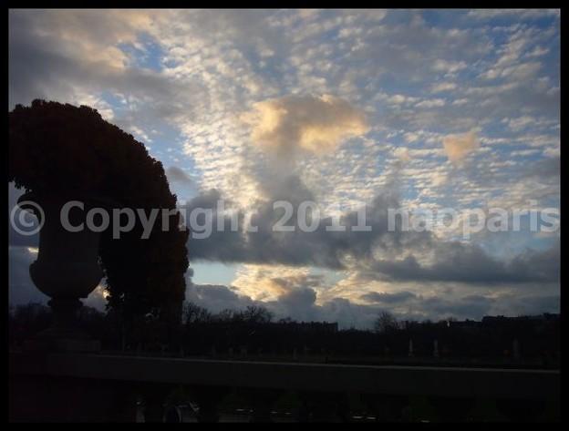 写真: P2940413