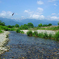 写真: 安曇野・穂高川[2008.6]