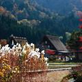写真: 『原風景の秋。。。』