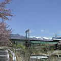 列車と桜とアルプスと。(1)