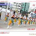 Photos: 无邪志府中魁星_01 - 第12回 東京よさこい 2011