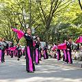 写真: 陵-RYO-_08 -  「彩夏祭」 関八州よさこいフェスタ 2011