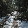 Photos: Path02222012dp2