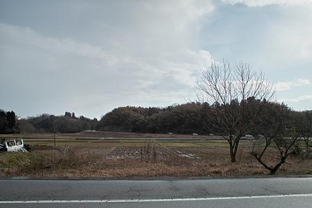 landscape04012012dp1