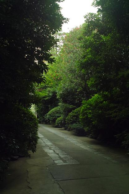 東禅寺の光と影
