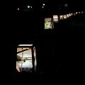 Photos: たまには夜の上野公園1-979c