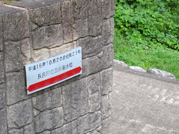 IMG_0929 長良川氾濫最高水位その1