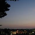 Photos: 夕暮れ
