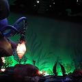 Photos: ディズニー 278