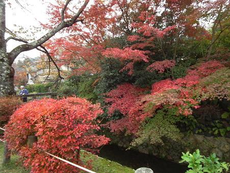 京都 625