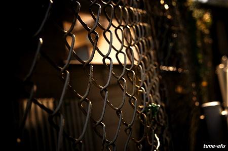 フェンス的被写界深度の件