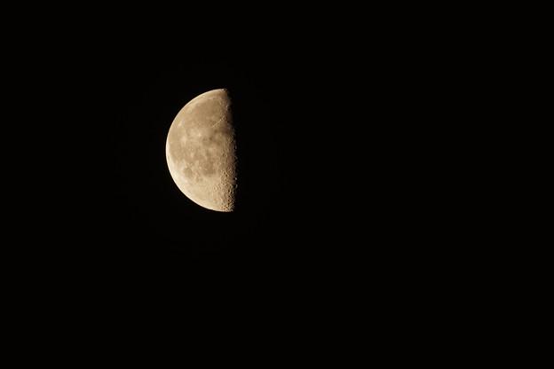 月齢:20.8の月