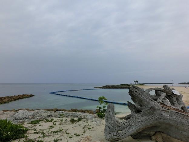 美ら海エメラルドビーチ