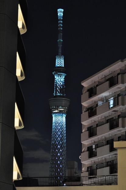 東京スカイツリー クリスマスイルミネーション