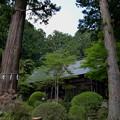 写真: 河口浅間神社・境内