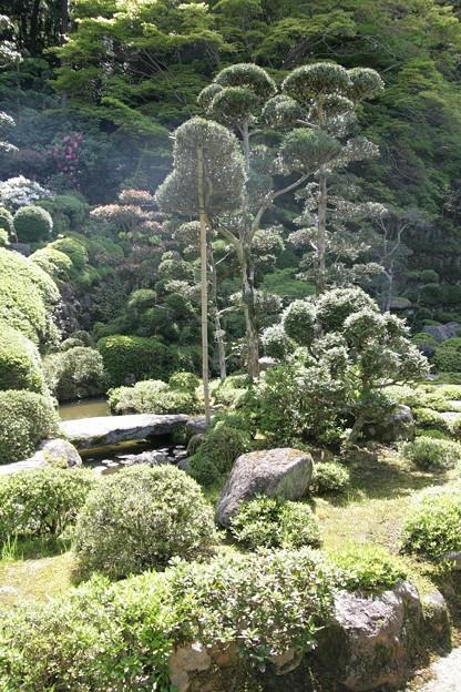 IMG_5469當麻寺・西南院・西南院庭園