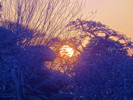 夕陽の輝き