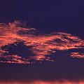 Photos: 夜明け雲