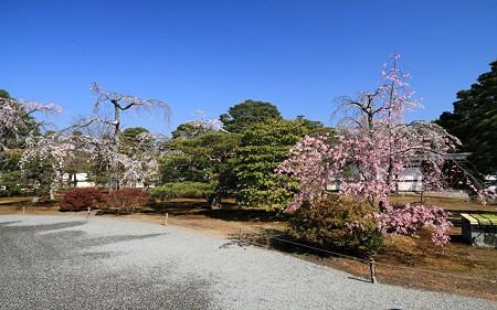 京都御所25