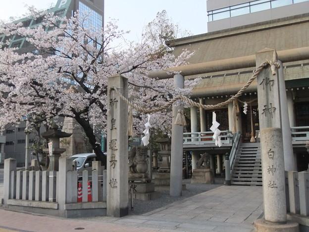 白神社 Shirakami Shrine
