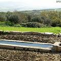 Photos: 家畜用水飲み場