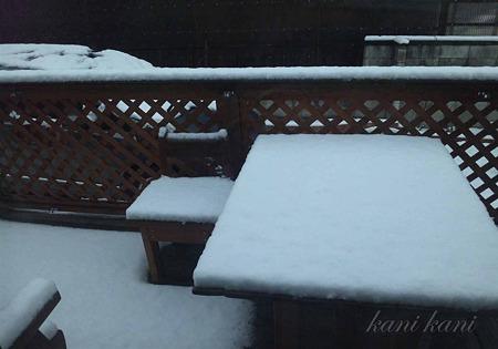 2011.2.15 雪