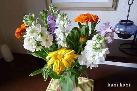 千葉で摘んできた花