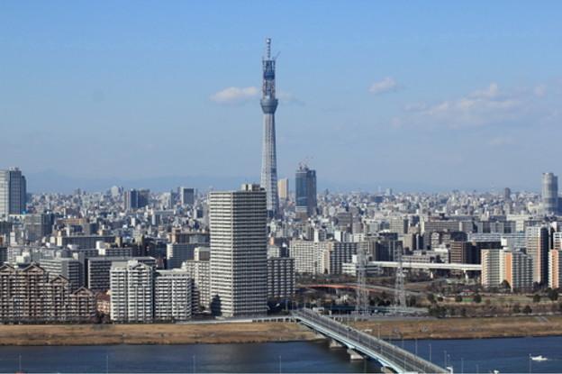 写真中央に東京スカイツリー