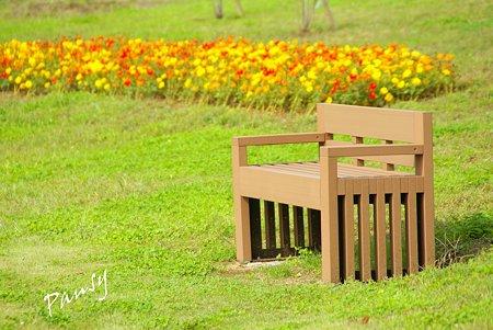 花菜ガーデン・・28