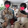 Photos: 蓮に・・・