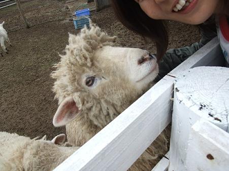 羊さんとのショット♪