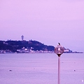 写真: 江ノ島に憧れて♪
