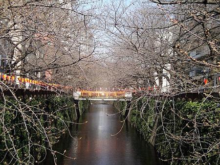 2012.3.27 目黒川