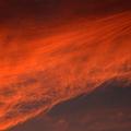 紅葉につられて染まった雲