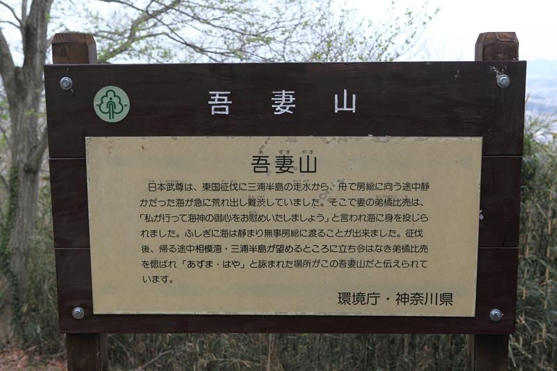 IMG_6011弘法山登山