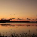 写真: 柴山潟の夕暮れ(2)