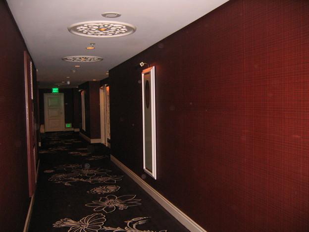 Wynn Walkway Refrigerator 10-3-2011 2221