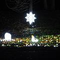 昭和記念公園のイルミネーション#6