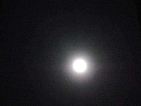 まだ月蝕ははじまってない