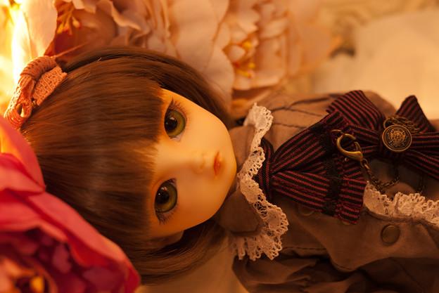 写真: めぐちゃん