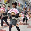 Photos: 23.6.19仙台すずめ踊り(その3)