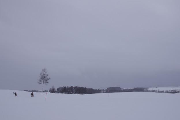 写真: 20111225_105754_0